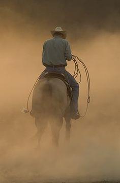 horse arena dust